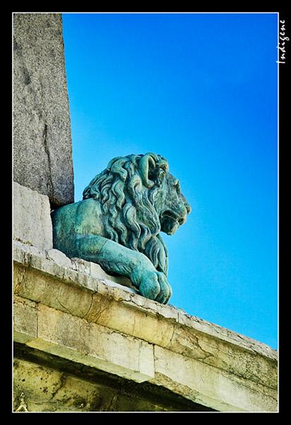 Le lion de l'obélisque