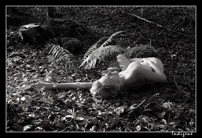 Couchée dans les bois