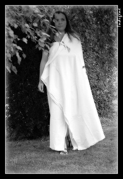 L'apparition de la Dame Blanche