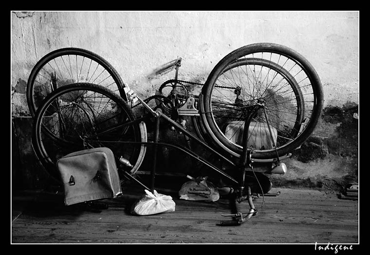 Les vélos