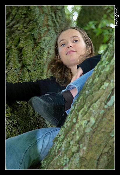 Du haut de son arbre