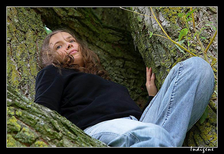 Sur un arbre perchée