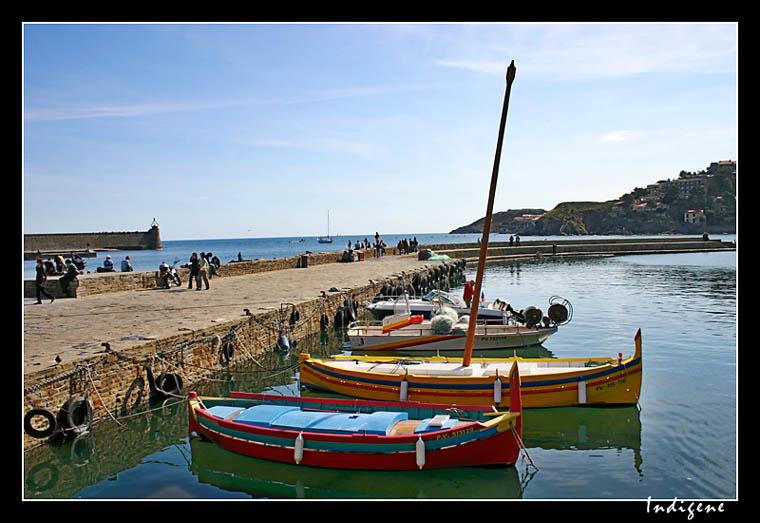 Bateaux de peche à Collioure