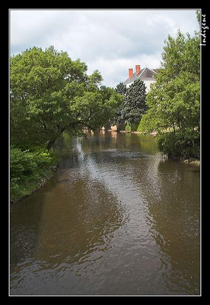 Rivière boisée en Sologne