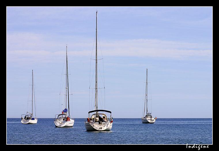 Les voiliers sur l'eau