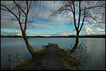 photo L'étang