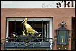 photo La cigogne de Strasbourg