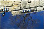 photo Reflet dans la fontaine de Nîmes