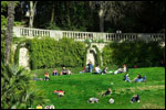 photo Un dimanche allongé sur l'herbe
