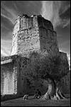 photo Au pied de la Tour Magne