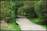 photo Le chemin