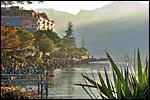 photo Montreux - Lac et Cactus