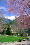 photo Le printemps dans les Pyrénées