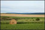 photo Les champs en été