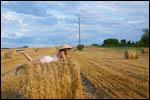 photo Seule au milieu des champs