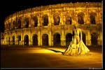 Galerie Les arènes de Nîmes