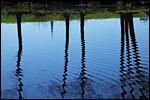photo Reflets dans l'eau