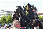 photo Les chevaux PMU