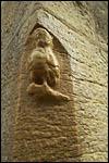 photo La Chouette de Notre-Dame