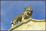 photo Lion de l'hôtel Legouz de Gerland