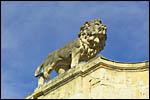photo Lion de l'hôtel Legouz de Gerland