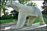 photo L'ours blanc de Dijon