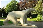 photo L'ours polaire du jardin Darcy