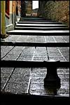 photo Ruelle en escaliers