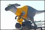 photo La kangourou Roadsign