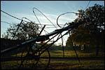photo Le moustique de Nolay