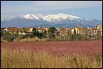 Galerie Paysages du Roussillon
