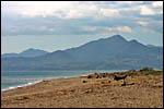 photo La plage du côté d'Argeles