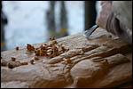 photo Sculpteur sur bois