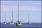 photo Les voiliers sur l'eau