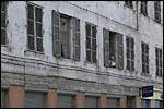 photo Les spectateurs aux fenêtres